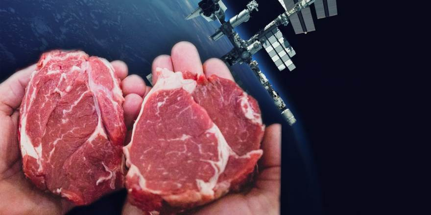 First man-made meat is grown in outer space