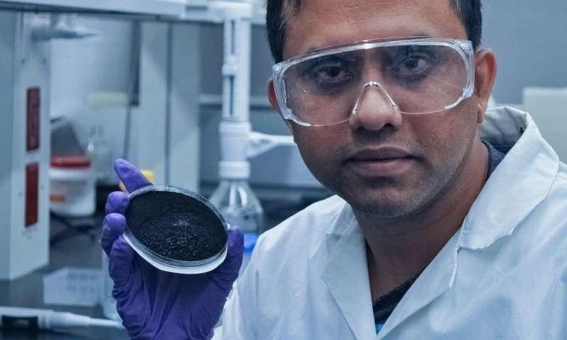 US scientists propose to use biochar to clean wastewater